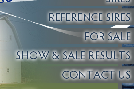 Sires - Reference Sires - For Sale - Contact Us